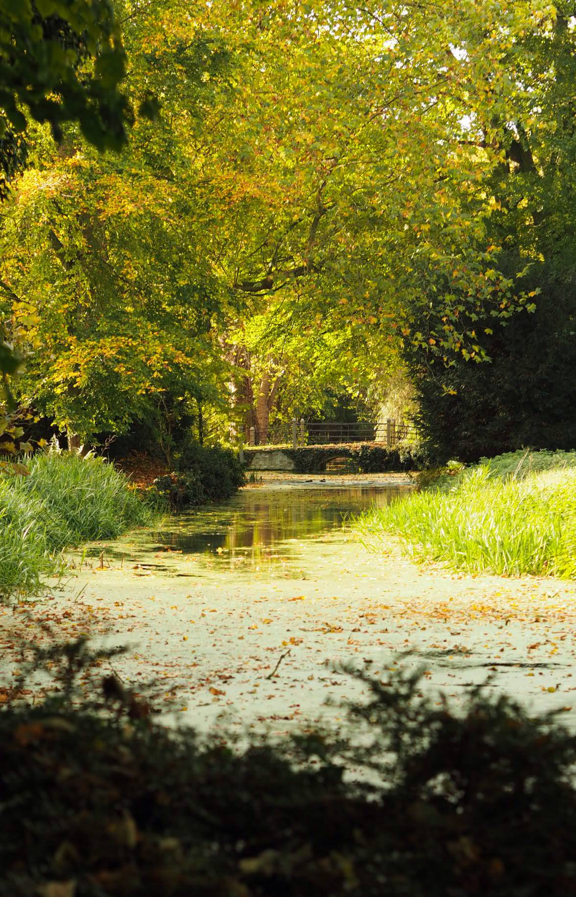 Anglesey abbey, National trust, things to do in cambridge
