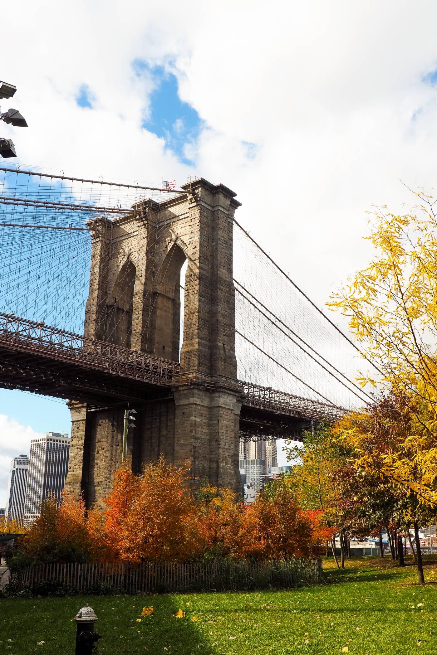 New_York31543