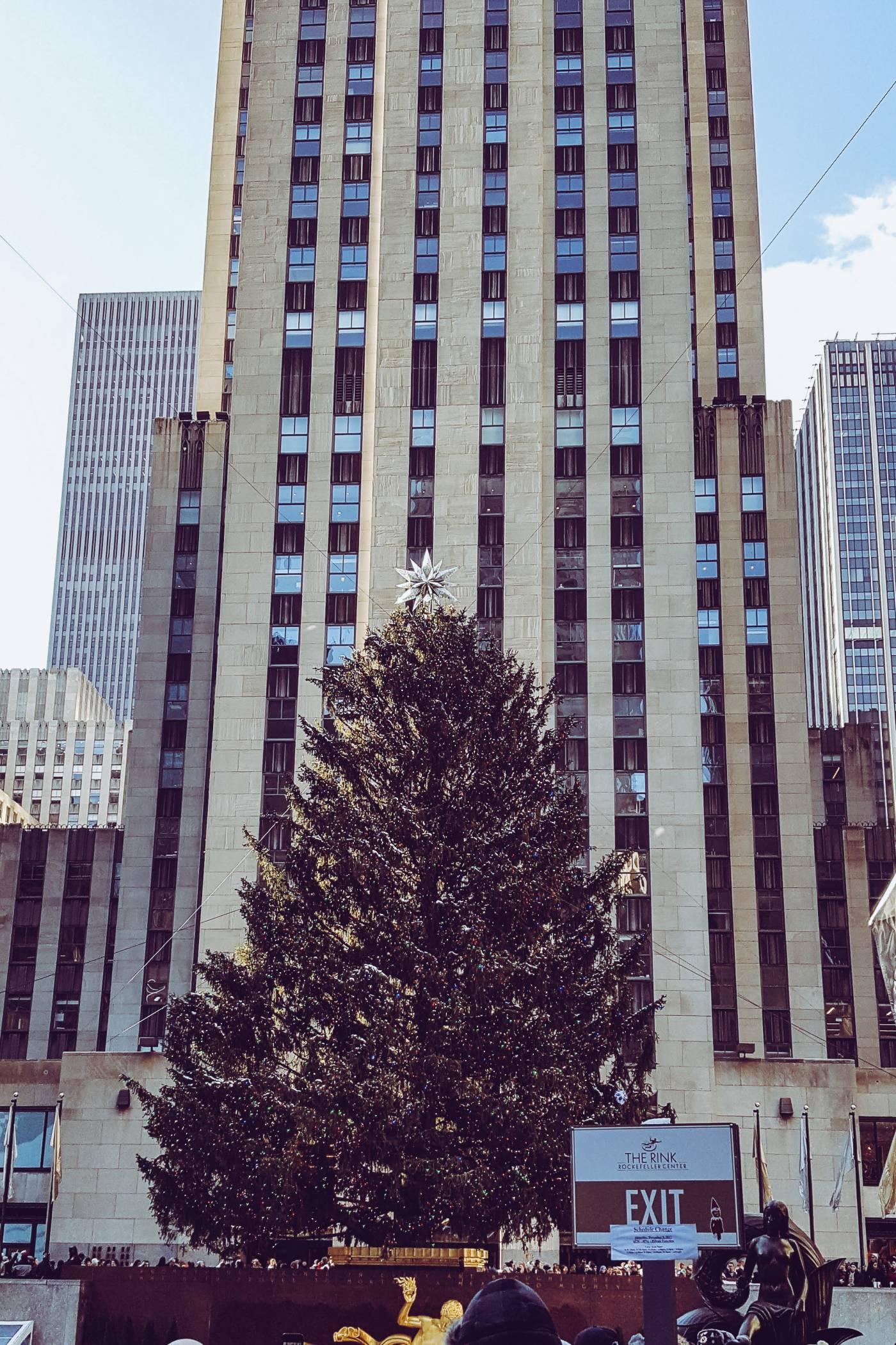 Rockefeller Christmas Tree, Rockefeller centre, new york