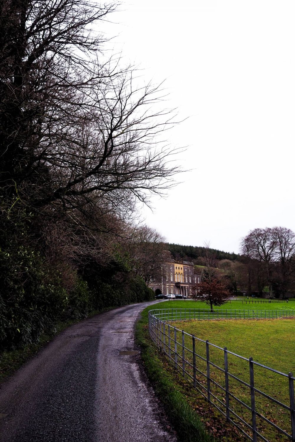 The driveway leading up to Nanteos Mansion surrounded by fields