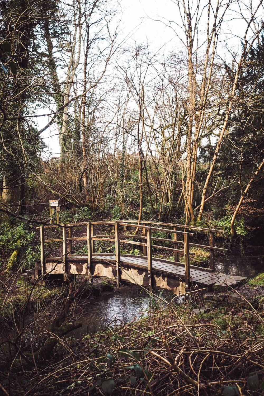A bridge in the Nanteos grounds