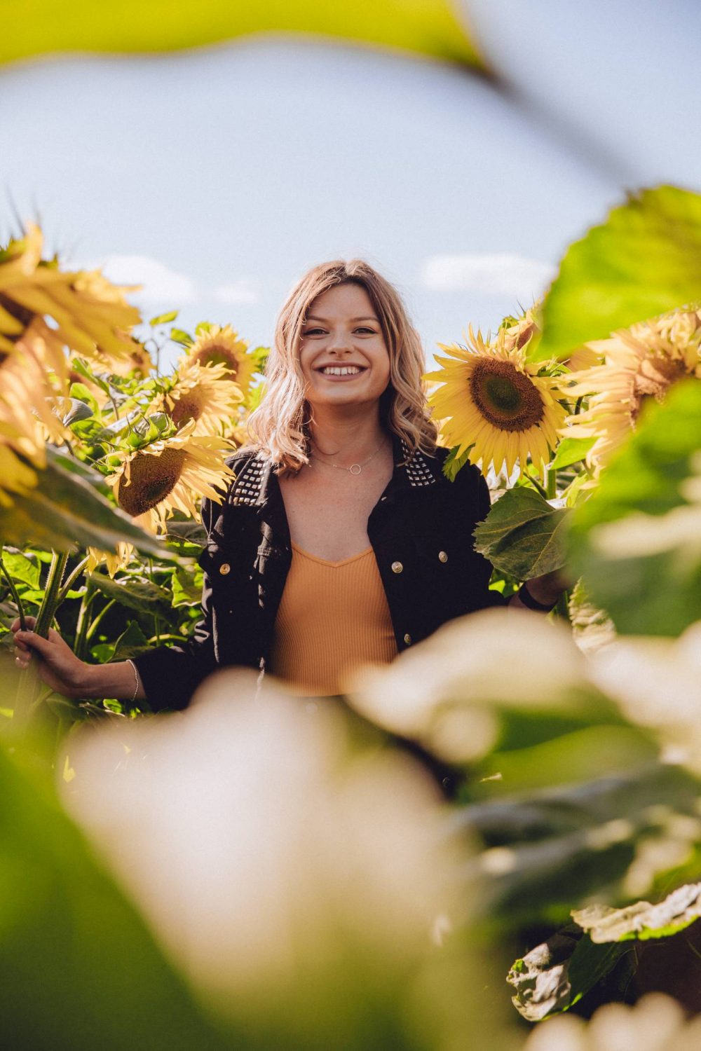 Sophie etc in a field of sunflowers